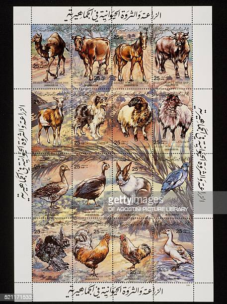 Complete sheet of 12 stamps honouring Animal domestication depicting top row from left Dromedary Cow Horse and Bull second row Goat Dog Sheep and Ram...