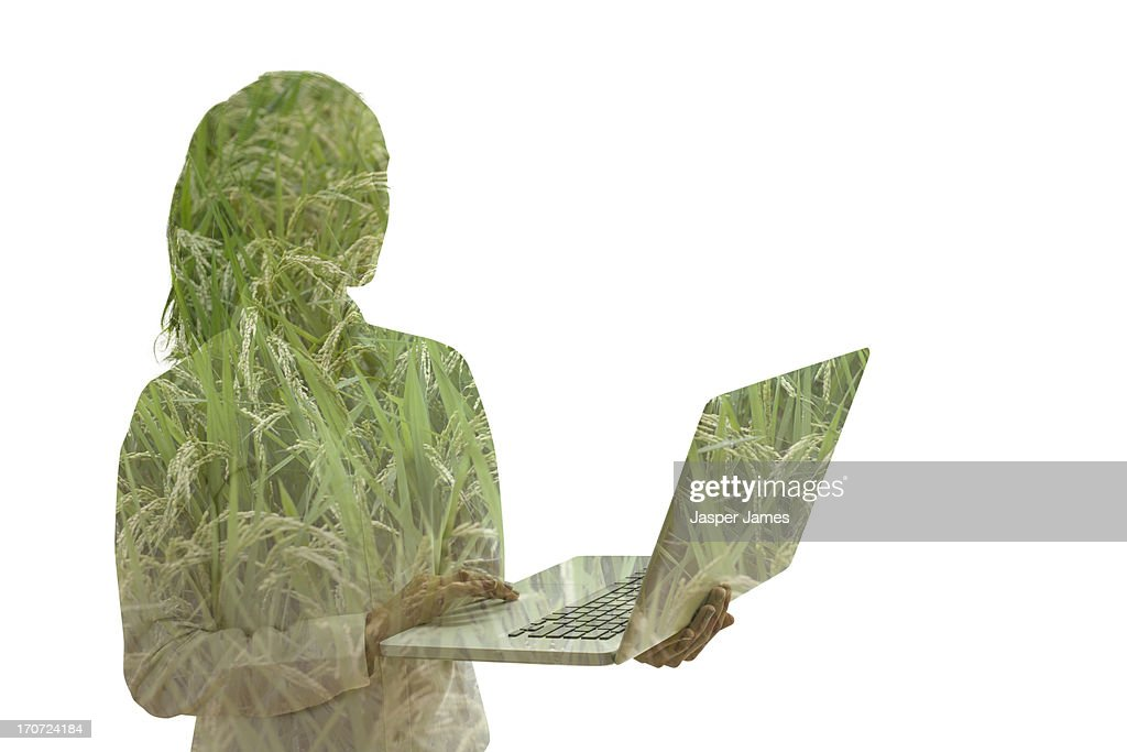 composite of young woman using laptop and grass : Stock Photo