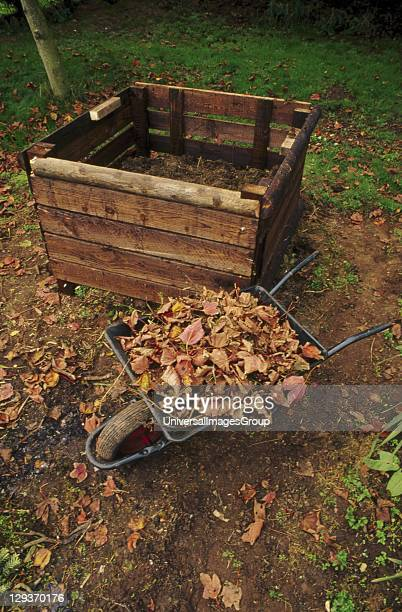 Compost Bin in garden ready to be filled with fallen leaves United Kingdom