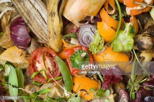 堆肥堆積の国内庭園の概要