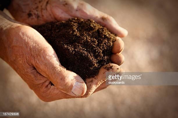 Compost Held in Man's Hands