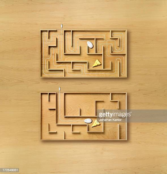 Computer Mice in a Maze