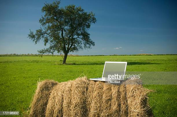 コンピュータの屋外