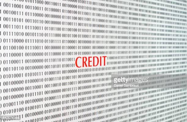 Computer screen with the word 'CREDIT'
