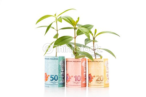 Concept Of Green Plant Grow On Malaysia Ringgit Currency Note Stock on st.lucia plants, persia plants, china's plants, sub saharan africa plants, hiroshima plants, montenegro plants, polynesia plants, australia northern territory plants, medically important plants, arabian peninsula plants, liechtenstein plants, middle colonies plants, himalayan region plants, britain plants, pohnpei plants, stacy plants, zambia plants, central china plants, ice land plants, mayotte plants,