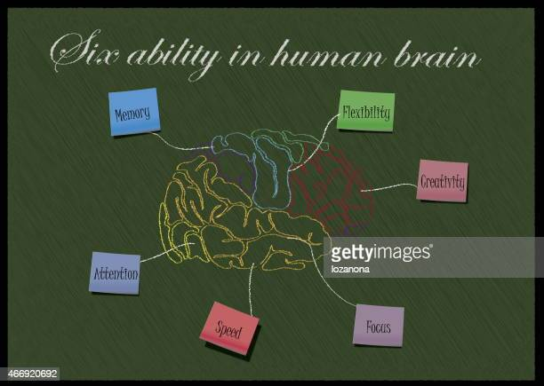 Concept of six ability in human brain