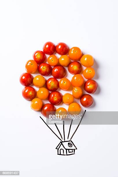Concept sketch of air balloon with cherry tomatos
