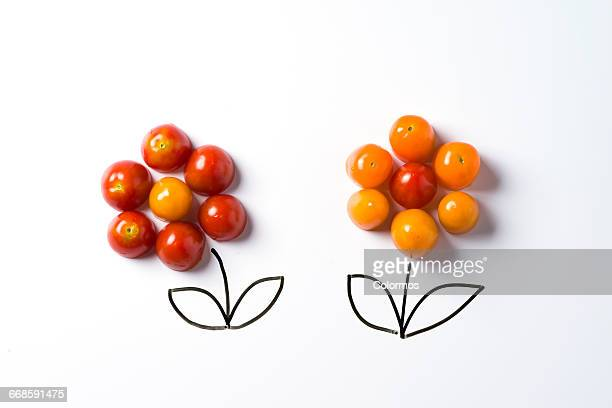 Concept sketch of flowers with cherry tomatos