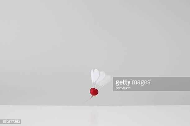 Conceptual badminton shuttlecock