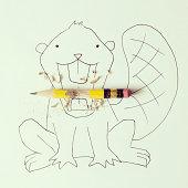 Conceptual beaver eating pencil