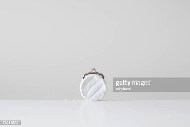 Conceptual cheese purse