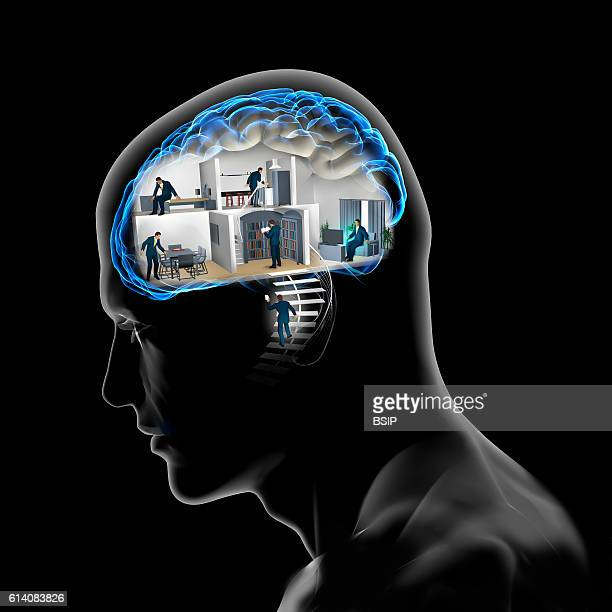 Conceptual image of the brain The brain's areas smell taste vision memory and understanding of language shortterm memory and action programming...