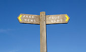 Fake and True News - Conceptual Signpost