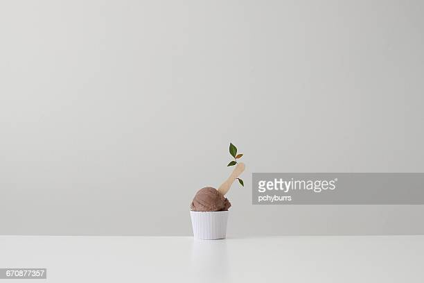 Conceptual tub of chocolate ice-cream with flower on a stick
