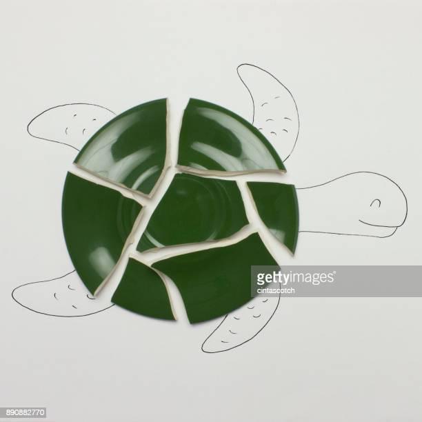 Conceptual turtle