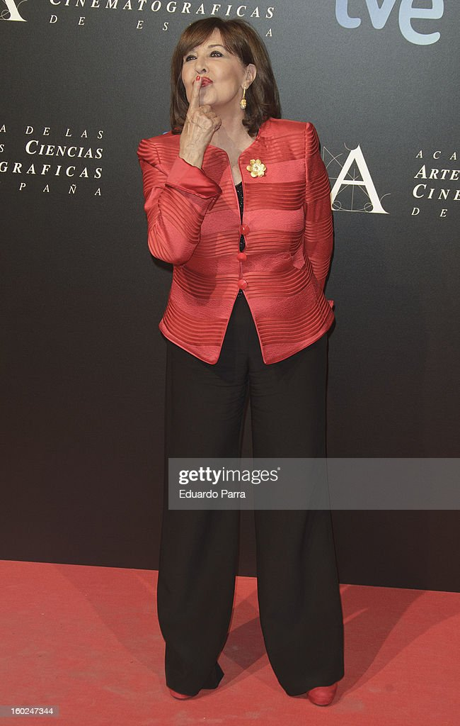Concha Velasco attends Goya awards final candidates party photocall at El Canal theatre on January 28, 2013 in Madrid, Spain.