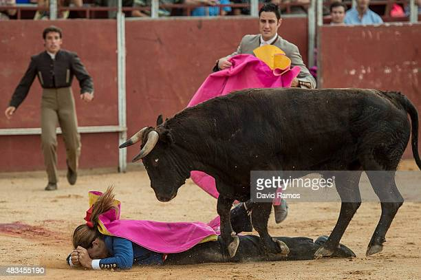 Conchi Rios is tossed as she performs during a bullfight at a mobile bullring on August 6 2015 in Villanueva De La Jara Spain It is thought there are...