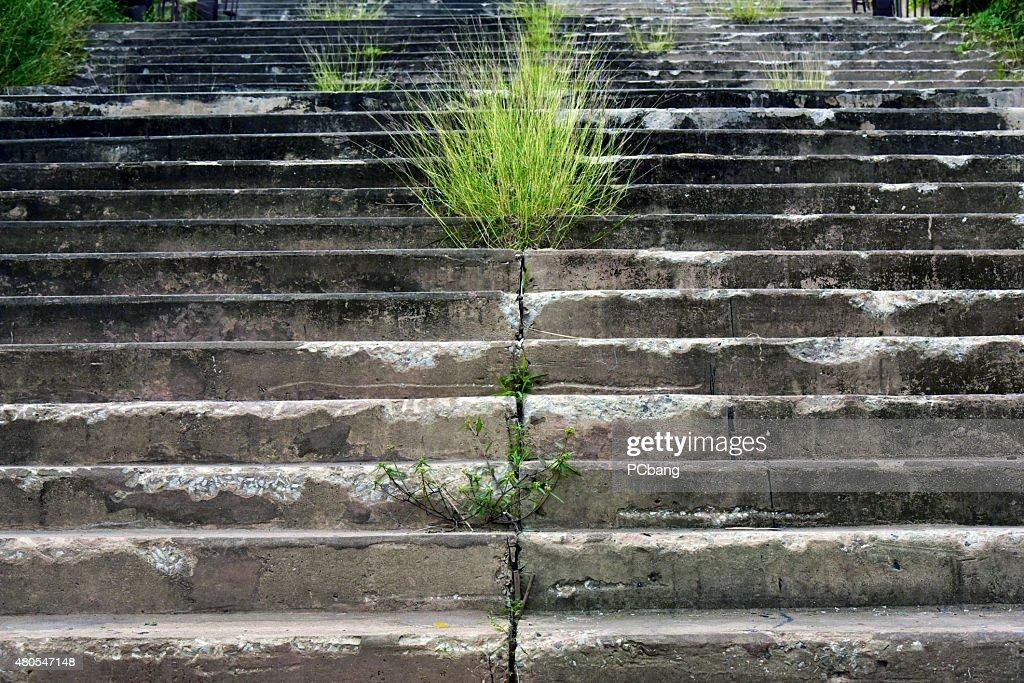 Escalera de hormigón : Foto de stock
