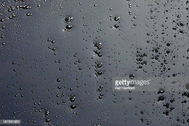 Condensation on a black background