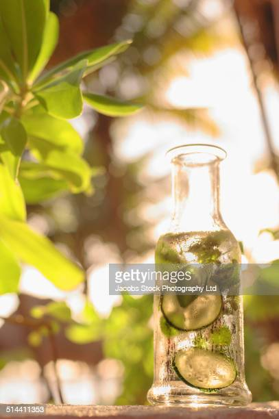 Condensation on water pitcher with cucumber and herbs