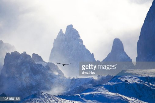 Condor Flying Towards El Chelten Snow Covered Mountain