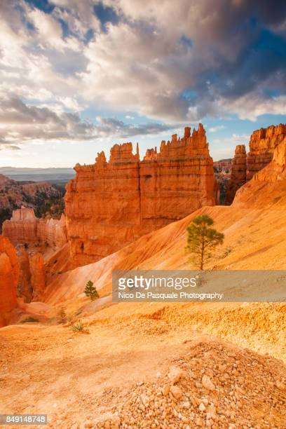 Conformations at Bryce Canyon
