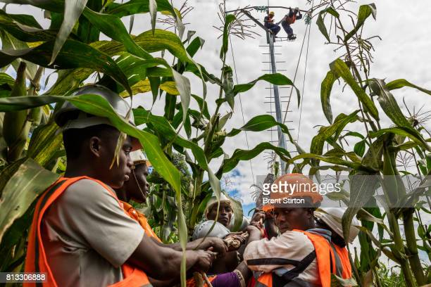 Congolese men lay electricity pylons for the power that will be supplied by Matebi Hydroelectric station The powerstation is an initiative of Virunga...