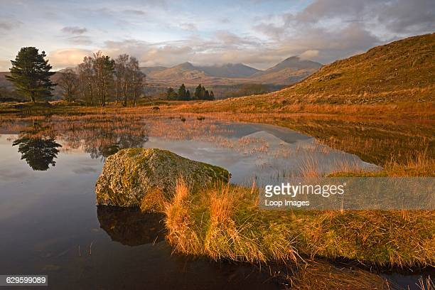 Coniston Old Man viewed from Kelly Hall Tarn Torver England