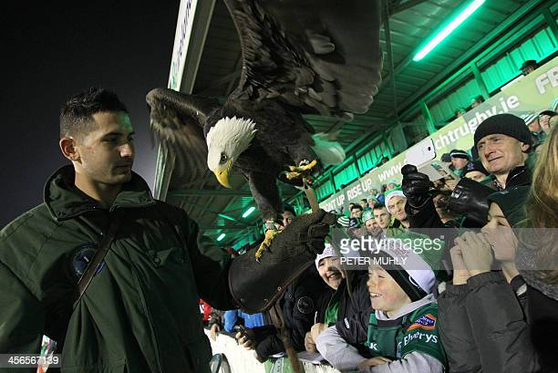 Connacht fans with their bald eagle team mascot before the European Cup rugby union pool match between Connacht Rugby and Toulouse at The...