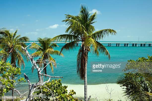Connecting  Florida Keys