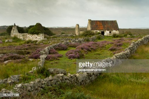 Connemara national park, Ireland : Stock Photo