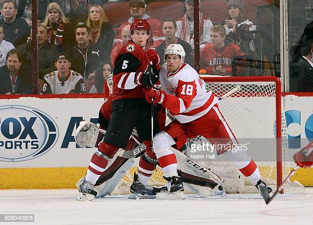 Connor Murphy of the Arizona Coyotes and Joakim Andersson of the Detroit Red Wings battle for position in front of goaltender Louis Domingue of the...