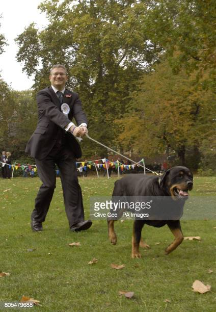 Conservative MP Andrew Rosindell is taken for a walk by dog Bentley during the Westminster Dog of the Year Competition