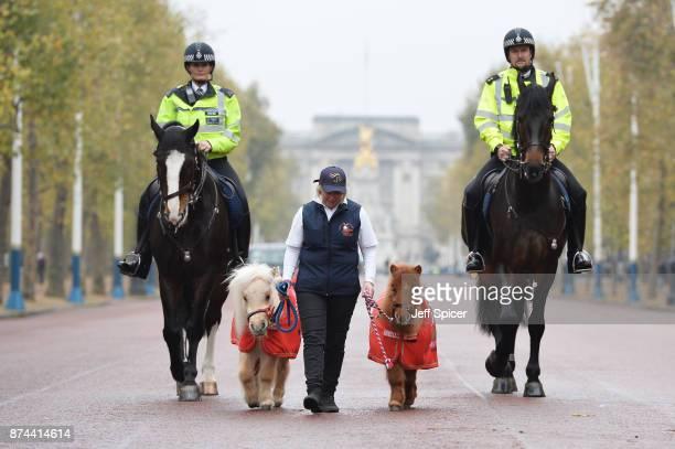 Constable Clare Rees on Merlin Teddy Rachel Francis Doris and Inspector Simon Rooke on Quixote Metropolitan Police Horses Merlin and Quixote are...