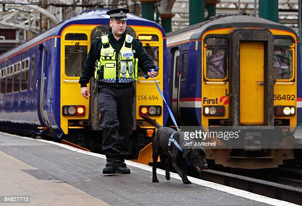 Constable Raymond Martin and Bruce the two year old black rescued Labrador work at Central Station on February 17 2009 in Glasgow Scotland Bruce has...