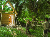 Constructing eco friendly house in the forest