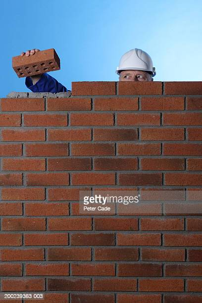 Construction worker holding brick behind wall