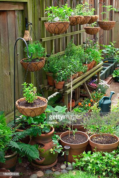 Container Garten