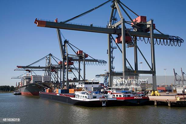 Container port quayside cranes Port of Rotterdam Netherlands