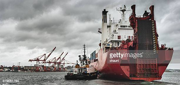 Container Ship Arrives at Port