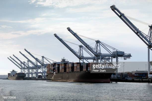 Container ship moored by cranes at harbor against sky