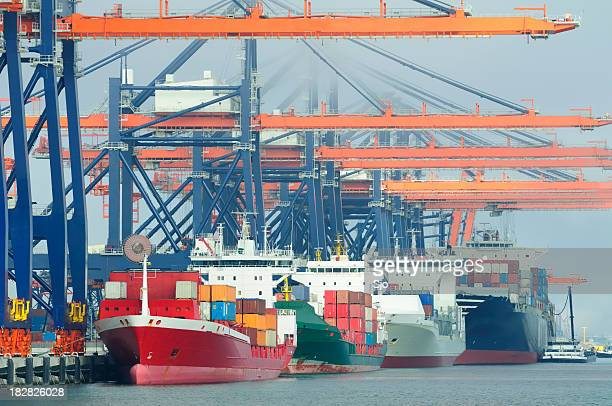 Container terminal in the harbor