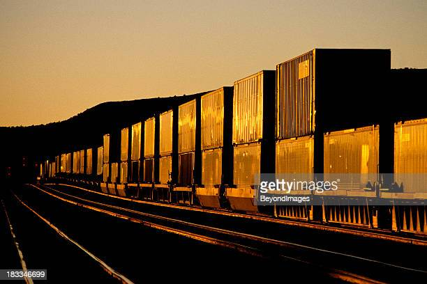Container train at sunset