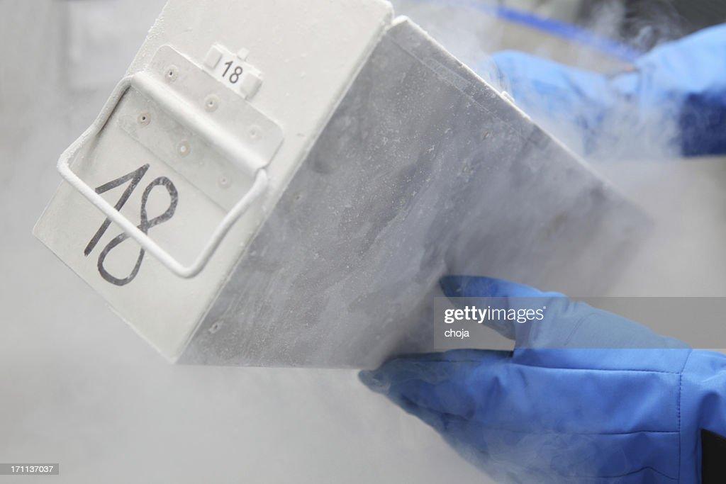 Container with liquid nitrogen