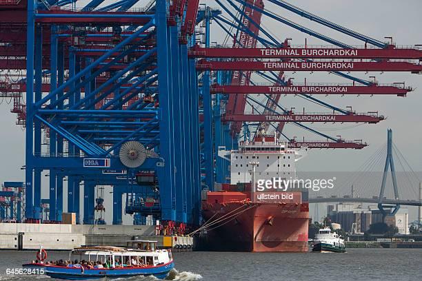 Containerbrücken am Containerterminal Burchardkai der HHLA im Stadtteil Waltershof im Hamburger Hafen hinten die Köhlbrandbrücke