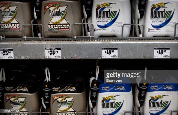 Containers of Roundup a weed killer by Monsanto Co are displayed for sale at a Home Depot Inc store in the Brooklyn borough of New York US on Friday...