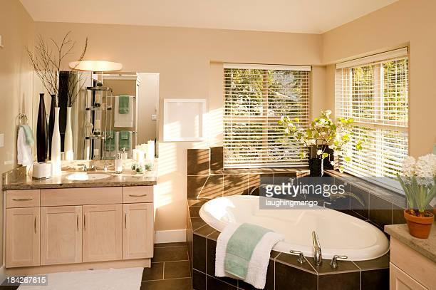 contemporary bathroom bathtub
