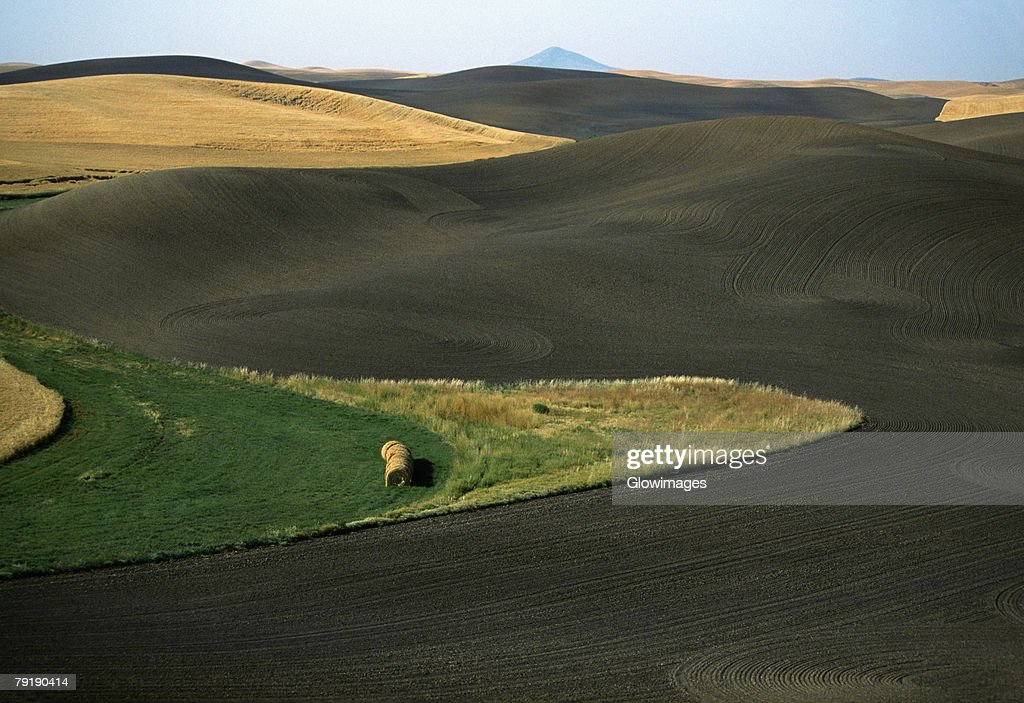 Contour plowed fields, Washington state : Stock Photo