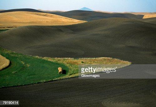 Contour plowed fields, Washington state : Stock Photo