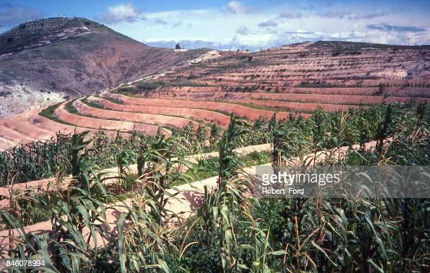 Contoured erosion control bunds on eroded hills near Asunción Nochixtlán Oaxaca Mexico